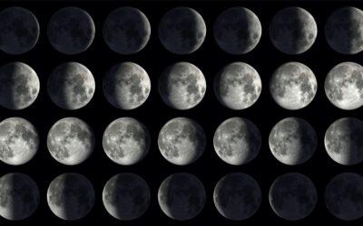 Månens olika faser