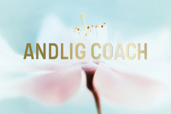 Andlig Coach webbutbildning